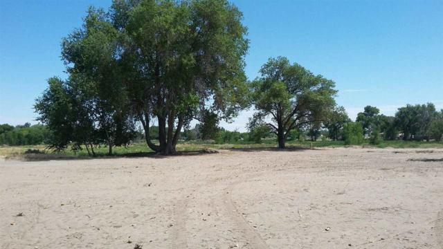 785 Wetland, Fallon, NV 89406 (MLS #190009206) :: Marshall Realty