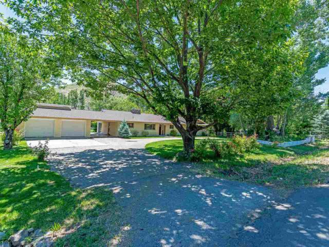 22870 Carriage Drive, Reno, NV 89521 (MLS #190009347) :: Ferrari-Lund Real Estate