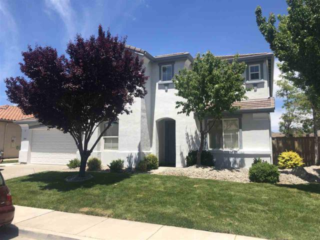 2655 Heather Field Lane, Reno, NV 89521 (MLS #190009390) :: Theresa Nelson Real Estate