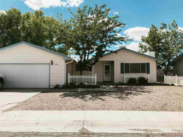 1011 Rabbitbrush Ln, Tonopah, NV 89049 (MLS #190009399) :: Chase International Real Estate