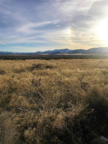 Western Horizon Dr, Winnemucca, NV 89445 (MLS #190009405) :: Marshall Realty