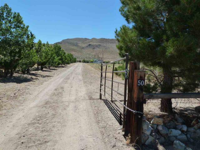 50 Juniper Way, Yerington, NV 89447 (MLS #190009517) :: Marshall Realty