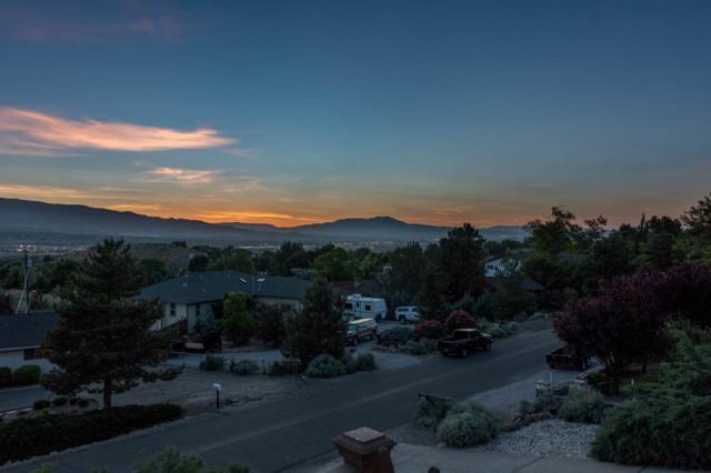 1205 Appian Way, Washoe City, NV 89510 (MLS #190009540) :: Theresa Nelson Real Estate