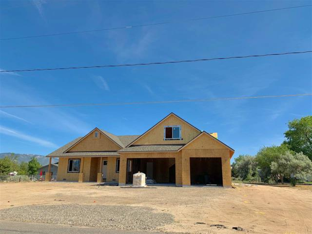 1338 Downs Drive, Minden, NV 89423 (MLS #190009578) :: Marshall Realty