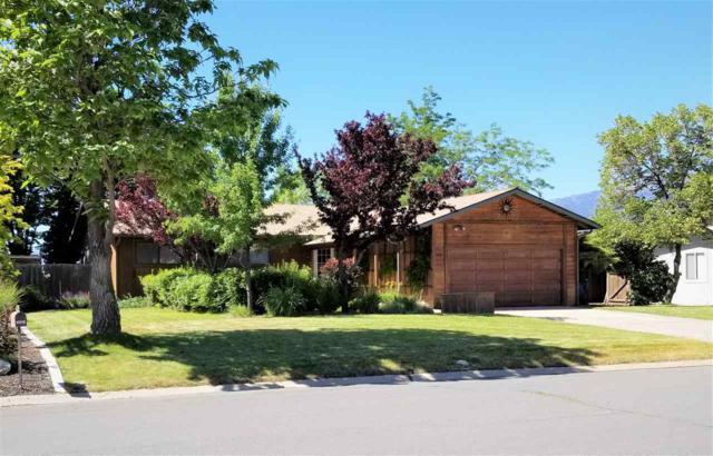 1249 Monarch Lane, Gardnerville, NV 89460 (MLS #190009586) :: Marshall Realty
