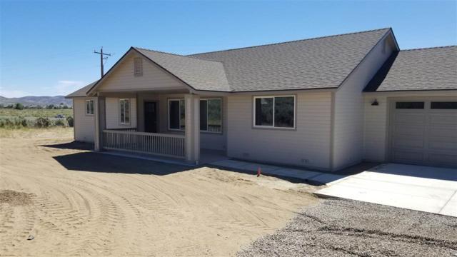 3195 Hobo Hot Springs, Minden, NV 89423 (MLS #190009716) :: NVGemme Real Estate