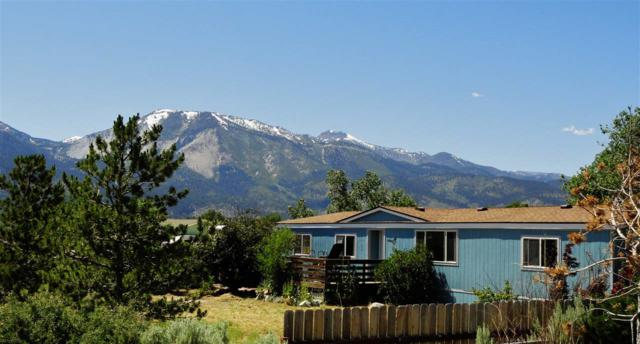 3525 Ormsby Ln, Washoe Valley, NV 89704 (MLS #190009952) :: Ferrari-Lund Real Estate