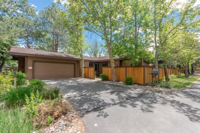 605 E Riverview Circle, Reno, NV 89509 (MLS #190009981) :: Theresa Nelson Real Estate