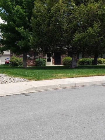 718 Travis Drive D, Carson City, NV 89701 (MLS #190010175) :: Ferrari-Lund Real Estate