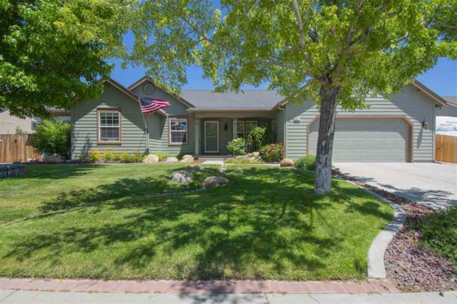 2927 Hot Springs Road, Minden, NV 89423 (MLS #190010308) :: NVGemme Real Estate