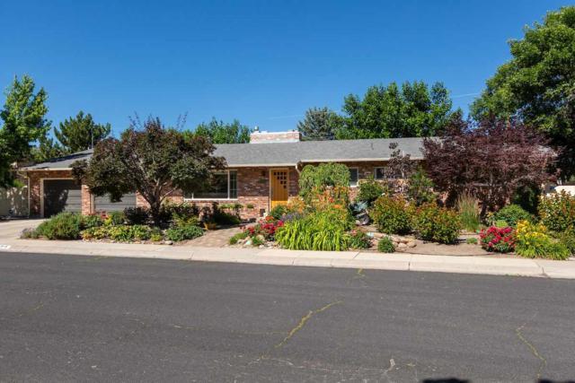 515 Shamrock Lane, Reno, NV 89509 (MLS #190010310) :: Theresa Nelson Real Estate