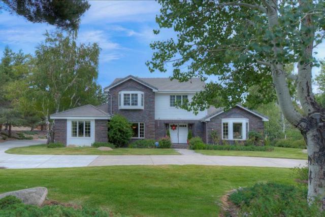 2700 Manhattan Dr, Carson City, NV 89703 (MLS #190010349) :: Chase International Real Estate