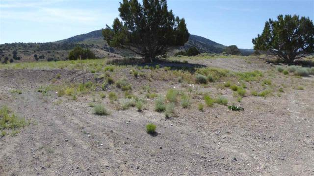 525 Ridgetop Road, Eureka, NV 89316 (MLS #190010505) :: NVGemme Real Estate