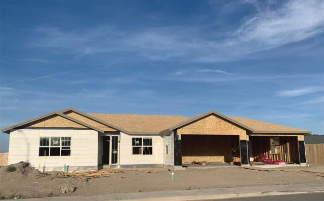 901 Brigit Circle, Fernley, NV 89408 (MLS #190010581) :: NVGemme Real Estate