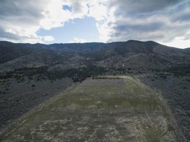 tbd Hwy 395 Westside, Gardnerville, NV 89410 (MLS #190010668) :: Vaulet Group Real Estate