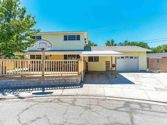2507 Janelle Dr., Sparks, NV 89431 (MLS #190010723) :: Theresa Nelson Real Estate