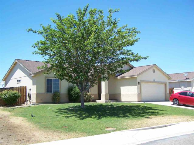 3085 Snowberry, Silver Springs, NV 89429 (MLS #190010748) :: NVGemme Real Estate