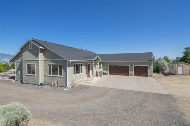 610 Dark Horse Court, Gardnerville, NV 89410 (MLS #190010778) :: Theresa Nelson Real Estate