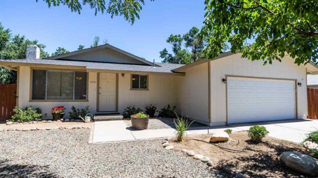 854 Auburn Ct, Carson City, NV 89705 (MLS #190010795) :: Theresa Nelson Real Estate