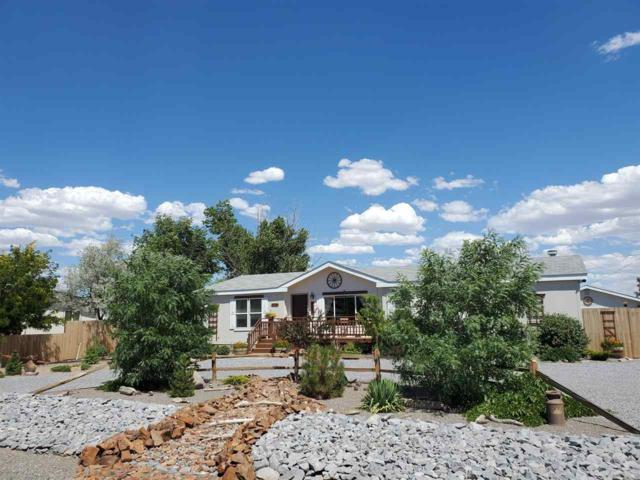 2720 Toiyabe St, Silver Springs, NV 89429 (MLS #190010811) :: NVGemme Real Estate