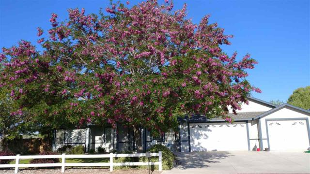 1180 Sarah Belle Lane, Fallon, NV 89406 (MLS #190010853) :: NVGemme Real Estate