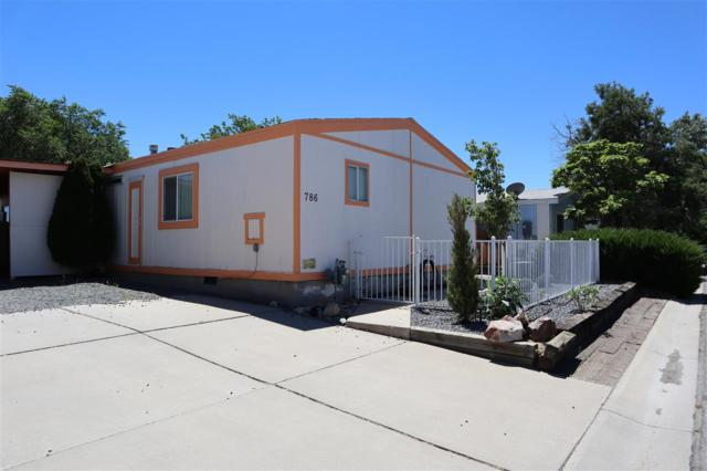 786 Chari, Moundhouse, NV 89706 (MLS #190010857) :: Chase International Real Estate