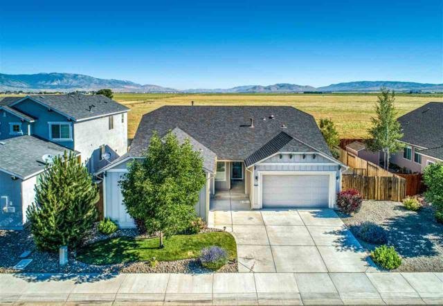 1252 Ox Yoke Ct., Gardnerville, NV 89410 (MLS #190010874) :: NVGemme Real Estate