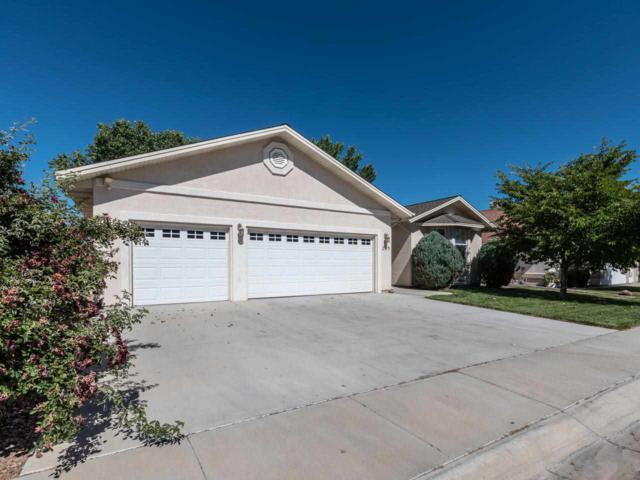119 Desert Lakes Drive, Fernley, NV 89408 (MLS #190010888) :: NVGemme Real Estate