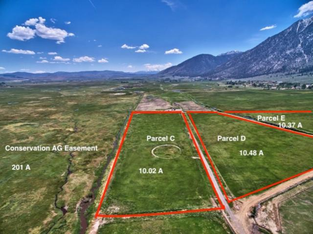 Parcel C Run Around Ranch, Gardnerville, NV 89460 (MLS #190010900) :: NVGemme Real Estate