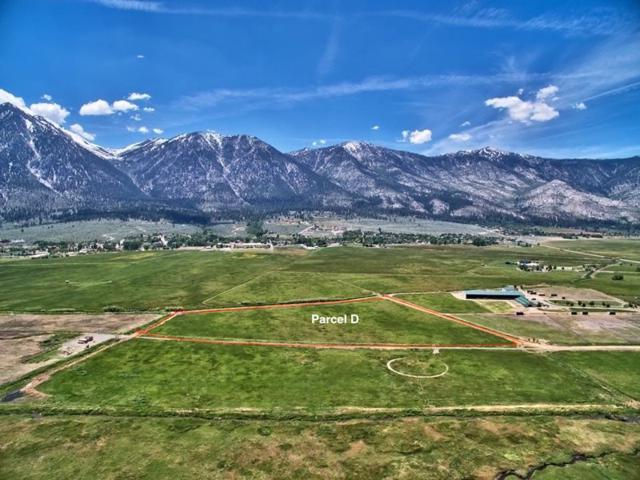 Parcel D Run Around Ranch, Gardnerville, NV 89460 (MLS #190010901) :: NVGemme Real Estate