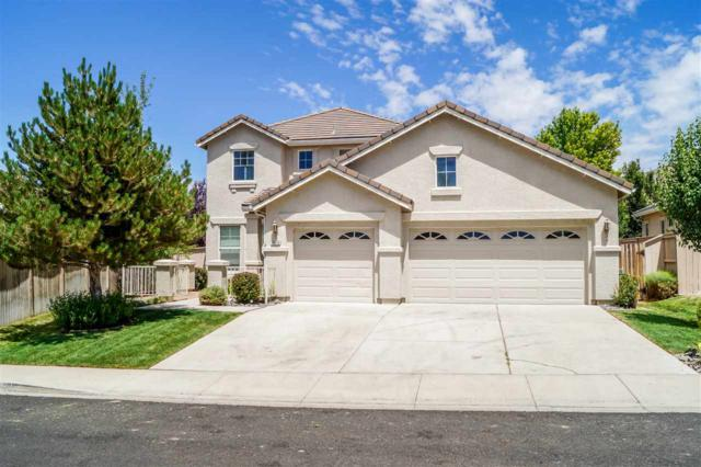 10710 Clear Vista Dr, Reno, NV 89521 (MLS #190010912) :: The Mike Wood Team