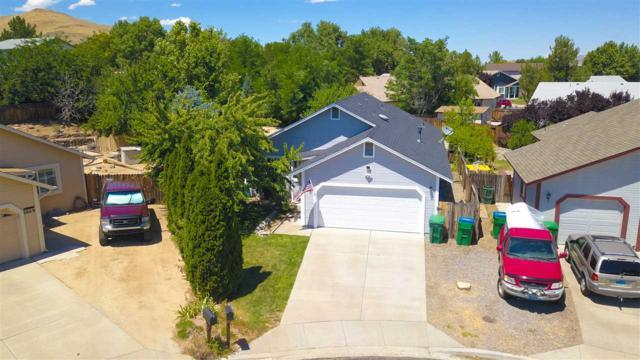 6671 April Street, Sparks, NV 89436 (MLS #190010924) :: NVGemme Real Estate