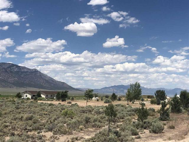 2640 Monte Neva Rd., McGill, NV 89318 (MLS #190011012) :: NVGemme Real Estate