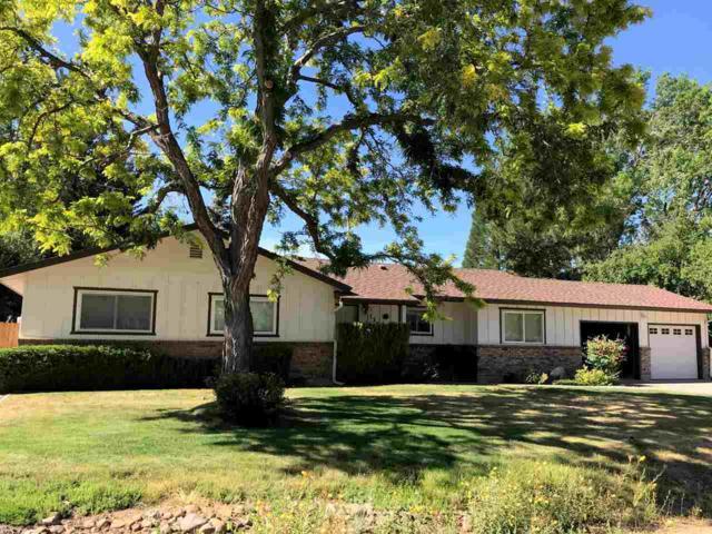 135 Drew Drive, Reno, NV 89511 (MLS #190011043) :: NVGemme Real Estate
