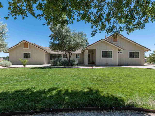 10570 Trailmaster Drive, Reno, NV 89508 (MLS #190011050) :: Mendez Home Team