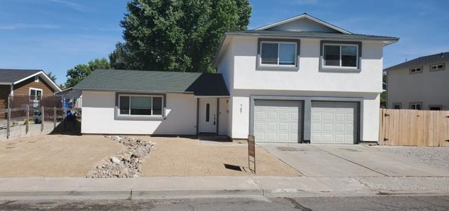 787 Glen Martin Drive, Sparks, NV 89434 (MLS #190011120) :: Theresa Nelson Real Estate