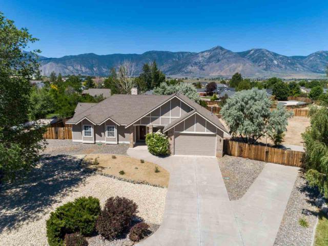 2644 Fawn Fescue Ct, Minden, NV 89423 (MLS #190011125) :: NVGemme Real Estate