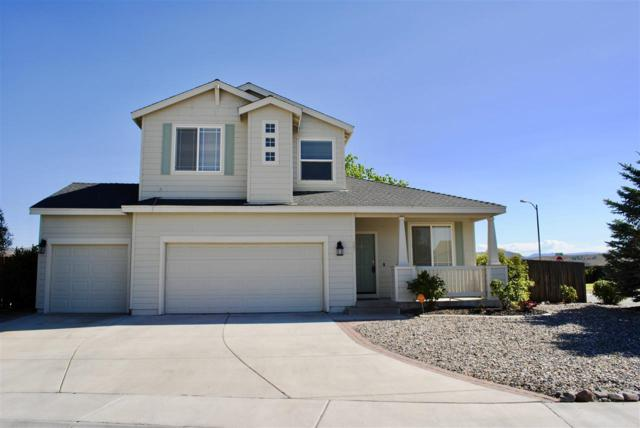 901 River Trails Ct., Dayton, NV 89403 (MLS #190011170) :: Mendez Home Team