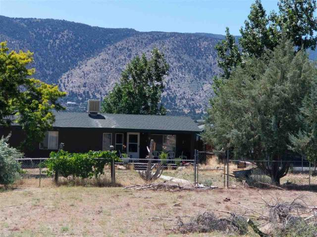 3620 Diamond Court, Wellington, NV 89444 (MLS #190011192) :: Northern Nevada Real Estate Group