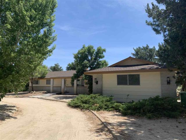 19 Christy Court, Carson City, NV 89701 (MLS #190011195) :: The Mike Wood Team