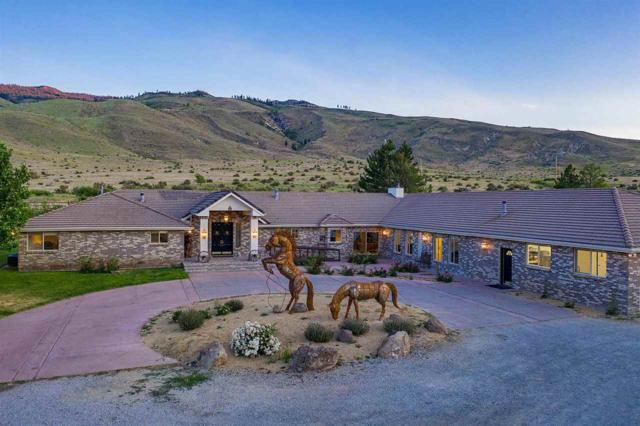 605 Deer Mountain Road, Verdi, NV 89439 (MLS #190011216) :: Northern Nevada Real Estate Group