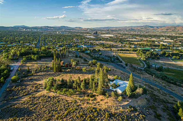6955 Windy Hill Way, Reno, NV 89511 (MLS #190011222) :: The Mike Wood Team
