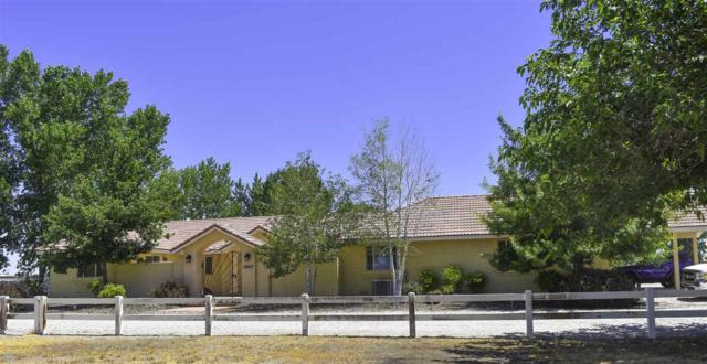 1867 Shecklet Cut Off +Guest House, Fallon, NV 89406 (MLS #190011231) :: The Mike Wood Team