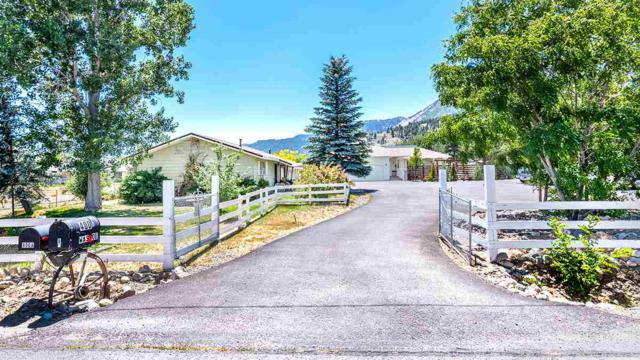 400 Washoe Drive, Washoe Valley, NV 89704 (MLS #190011257) :: Chase International Real Estate