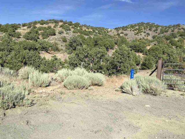 125 Boron Ln, Reno, NV 89506 (MLS #190011335) :: Theresa Nelson Real Estate