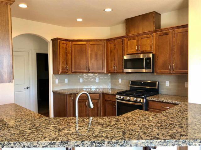 3006 Sarratea Dr, Carson City, NV 89703 (MLS #190011381) :: Chase International Real Estate