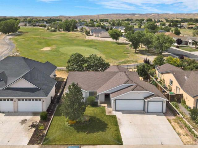 1011 Pepper Lane, Fernley, NV 89406 (MLS #190011458) :: Chase International Real Estate