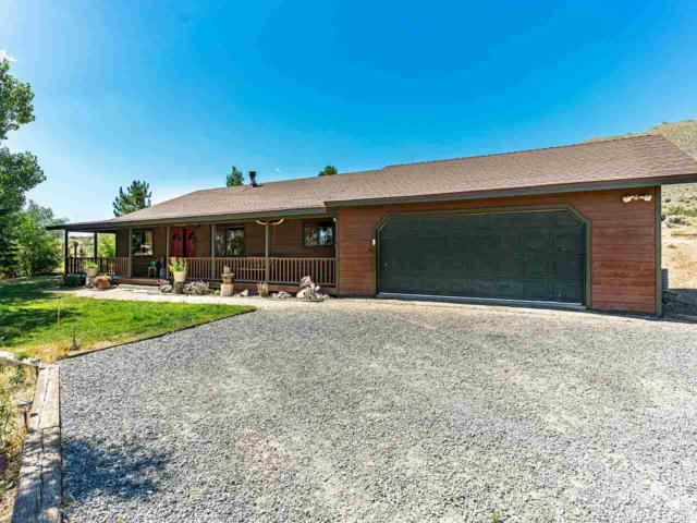 105 Appaloosa Circle, Reno, NV 89508 (MLS #190011479) :: Chase International Real Estate