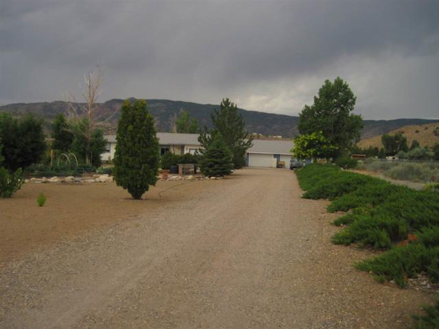 3866 Sapphire, Wellington Nv, Gardnerville, NV 89444 (MLS #190011505) :: Chase International Real Estate