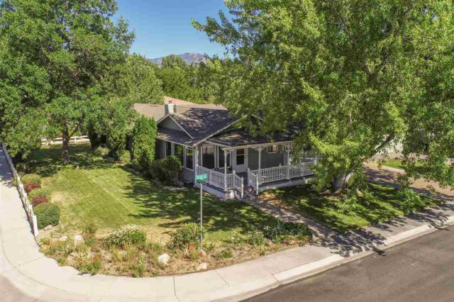 1604 Olua St, Minden, NV 89432 (MLS #190011555) :: Chase International Real Estate